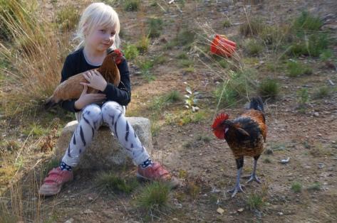 tyttö ja kana