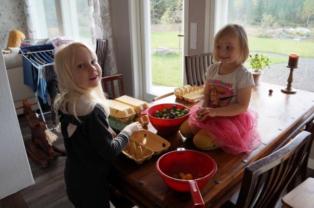 Tomaatit ja tytöt